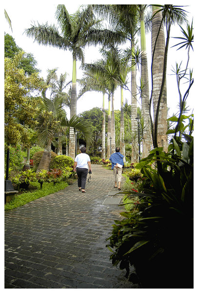 Sometimes ther are no steps but just a sloping walk. If there are no landscaping, then you see spectacular mountain views.