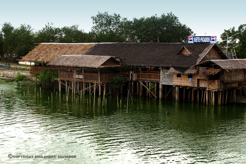 A view of one of the sea food restaurants that line the banks of the river.