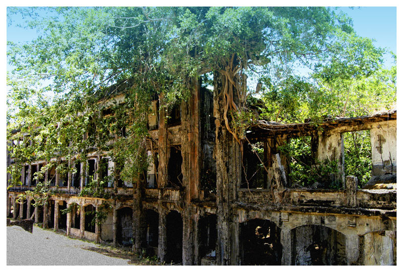 "<FONT size=""-1"">This is aview of the ruins of one of the big barracks building which is now being taken over by nature."