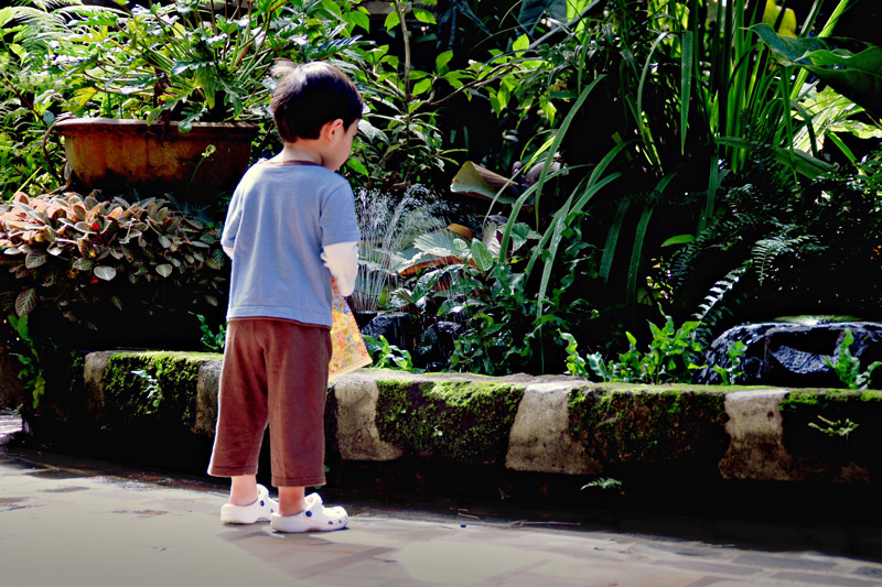 Ethan, attracted and curious of the multi-colored Koi fishes.