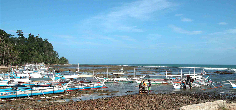 This is the part of Sabang Beach, tourist proceed to, for renting boats to get to the subteranean river. This part of the beach is not sandy but very rocky. This area is not protected by mountains across the Sabang Bay. It is directly facing the China Sea on the west.