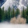 Fog layer, Yosemite Valley.