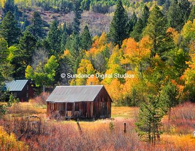 Old Cabin in the Sierra Nevadas