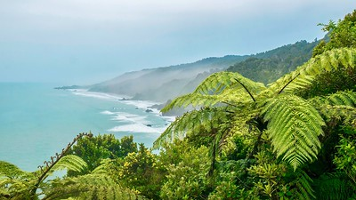 Misty morning on the Tasman Sea on the west coast of New Zealand's South Island