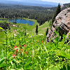 Hiking on the BumpPass trail and then to Cold boiling Lake in Lassen