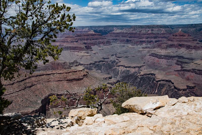 Grand Canyon-9