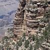 Grand Canyon-77