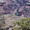 Grand Canyon-15