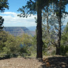 Grand Canyon-54
