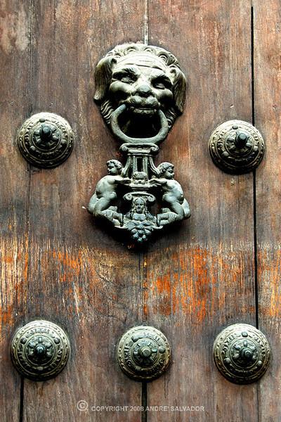 The main door's door knocker.