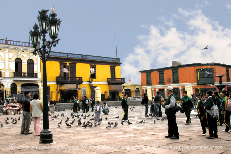 A street scene - Keep Lima clean. Eat a pigeon everyday!