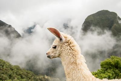 Travel-Peru