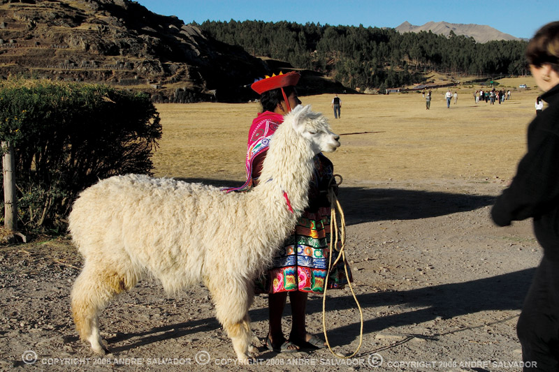 A woman and her alpaca with the grounds of Saqsayhuaman beyond.