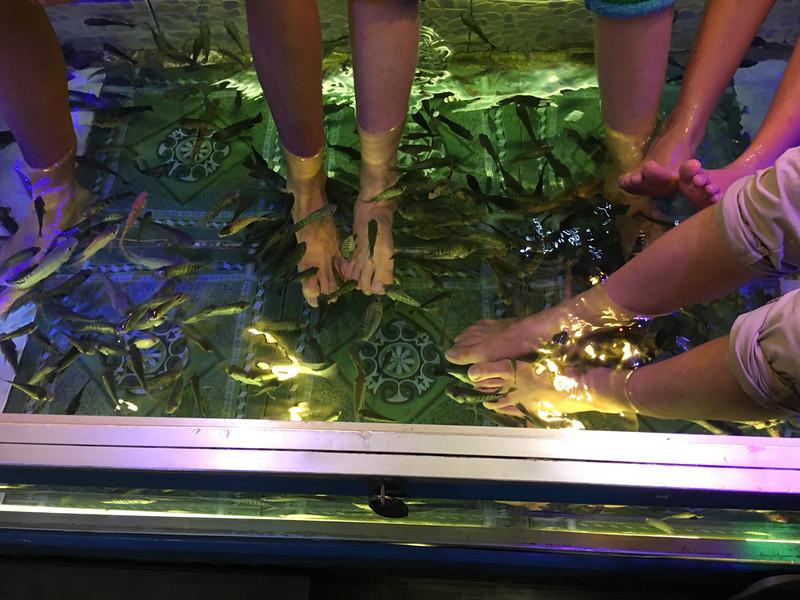 fish foot massage in Siem Reap
