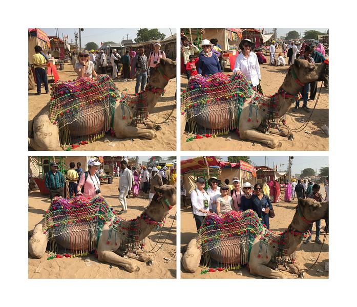 India large landscape book 2016 Page 42-2-1042SM