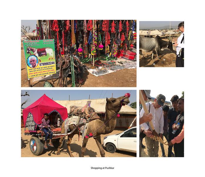 India large landscape book 2016 Page 41-2-1041SM