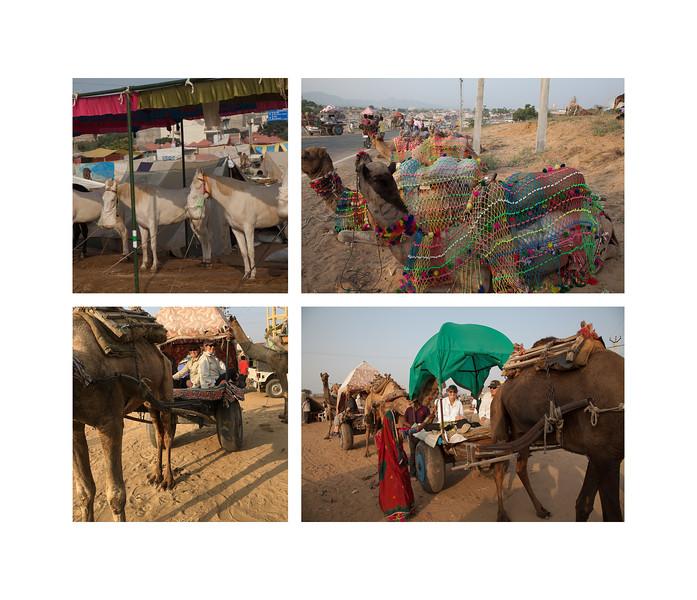 India large landscape book 2016 Page 29-2-1029SM