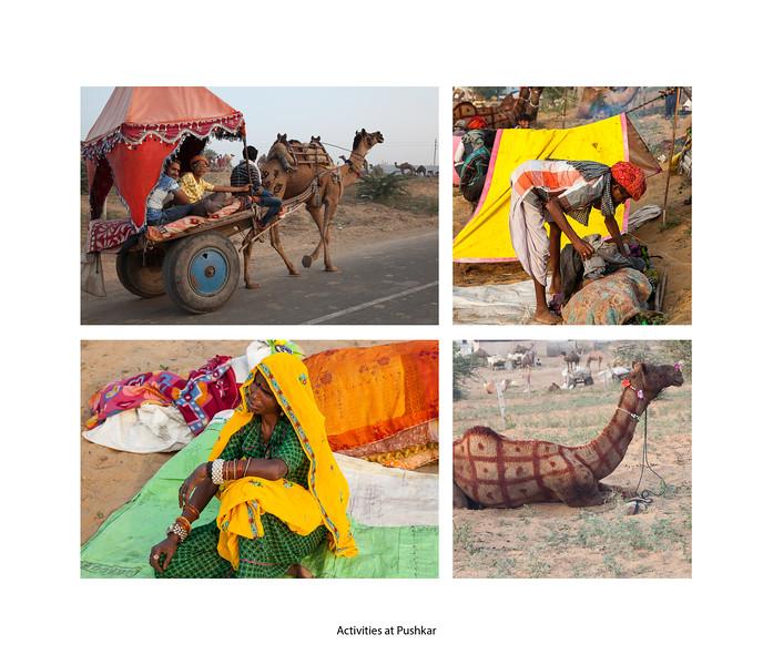 India large landscape book 2016 Page 30-2-1030SM