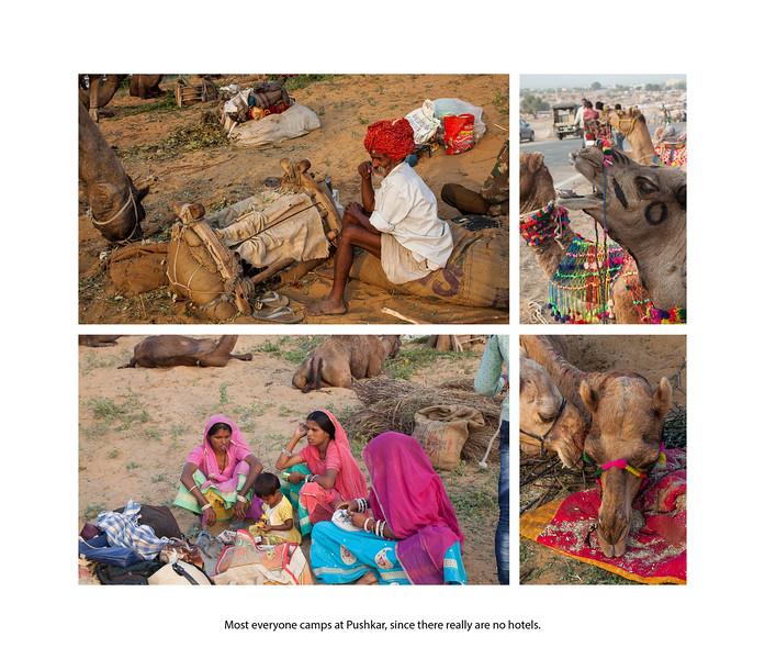 India large landscape book 2016 Page 27-2-1027SM