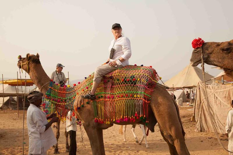 India 2016_MG_074718-1017SM