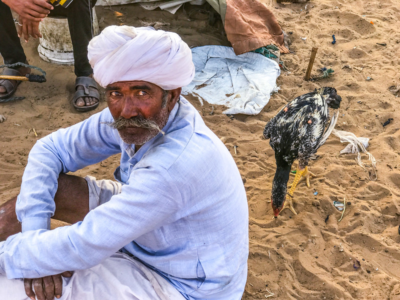 the chicken man at Pushkar