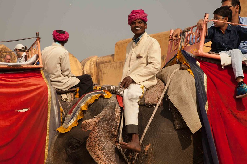 Mahut (elephant driver)  delivering tourists at the Amber Fort in Jaipur