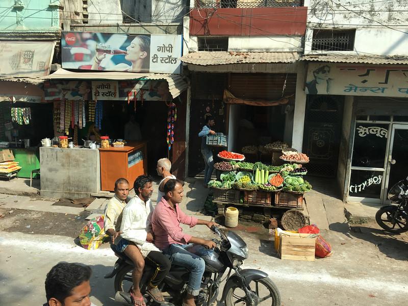 India 2016IMG_014386-1066SM