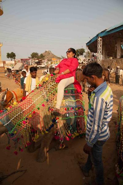 India 2016_MG_073816-1015SM