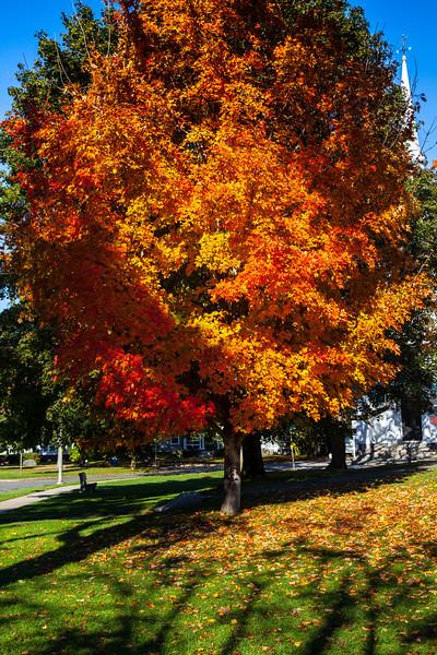 Lexington/Concord, MA