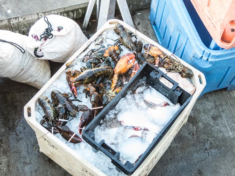 Commercial fishing, Chatum Bars, MA