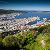 Bergen harbor from top of the funicular