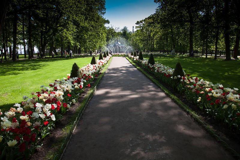 grounds of Peterhof