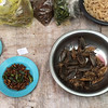 Luang Prabang (Laos) market (selling only the freshest bugs and larva)