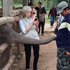 feeding the baby elephants - Laos