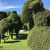 Centara grounds