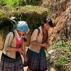 Flower Hmong girls