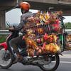 The chicken run, Hanoi, Vietnam
