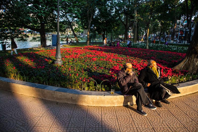 Hanoi retirees enjoy the evening sun and the flowers