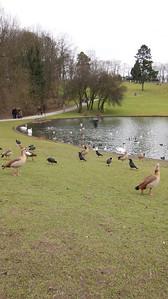 2011 - Brussels - Woluwe Park
