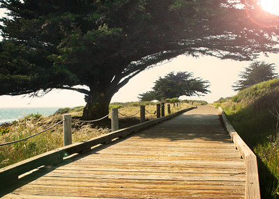 Moonstone Beach Boardwalk - 1 mile path along beach, Cambria