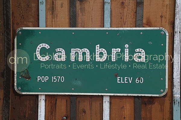CHS-PE Cambria Sign-PosterEdges IMG_8403