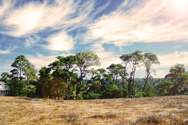 Cambria Pines Ranch near Huntington St