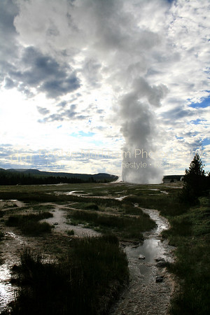 Old Faithful erupting at 6am,Yellowstone National Park