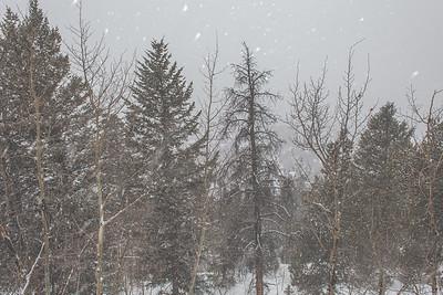 Boreas Pass   Breckenridge, Colorado