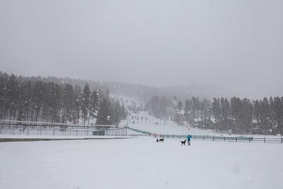 Carter Park | Breckenridge, Colorado
