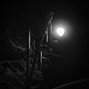 At Night | Downtown Raleigh, North Carolina