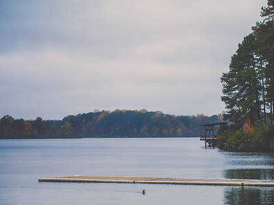 Lake Wheeler Park | Raleigh, North Carolina