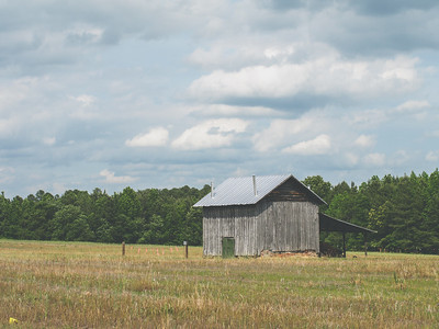 Creditor Road Farms | Raleigh, North Carolina