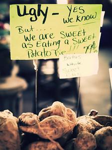North Carolina State Farmers Market | Raleigh, North Carolina