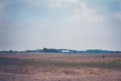 Moses McLean Farm | 2011
